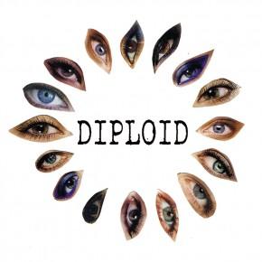 Diploid announce NZ / Aus tour